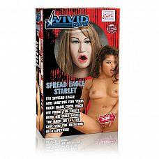 Реалистичная секс-кукла Vivid Raw Spread Eagle Starlet   Кукла Vivid Raw Spread Eagle Starlet телесная - искусительница.