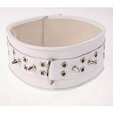Белый кожаный ошейник с шипами и кольцами  Изготовлен из натуральной кожи с велюровой подкладкой.