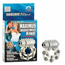 Колечко MAXIMUS с 10 металлическими шариками 1456-20 BX SE  Прозрачное упругое колечко для максимальной эрекции Вашего друга и стимуляцией клитора для Вас! Кольцо на пенис с 5  металлическими шариками, есть петля для мошонки также с металлическими шариками внутри.