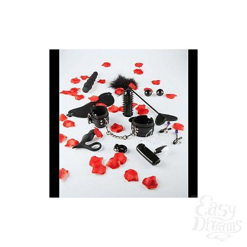 Фотография 1:  Набор чёрных стимуляторов и аксессуаров LOVETOY STARTER