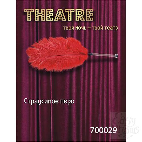 Фотография 1:  Красное страусовое пёрышко