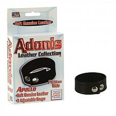 Adonis Leather Collection™ - Apollo™