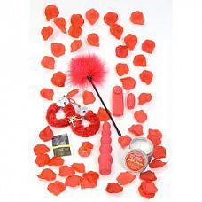 Подарочный набор секс-игрушек и аксессуаров RED ROMANCE GIFT SET   Подарочный набор,любой вечер сделает более романтический и желанный.
