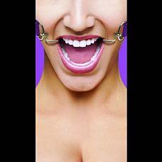 Фиолетовый расширяющий кляп Hook Gag  Расширяющий кляп в форме двух крюков с резиновыми наконечниками для безопасного использования.