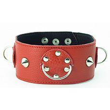 Ошейник красный с шипами 55017ars  Красный кожаный ошейник с короткими шипами.