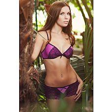 Чувственный комплект белья Violence   Комплект белья(трусики-шортики и бюст), лилового цвета.