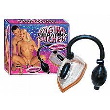 Женская вакуумная помпа с вибрацией и грушей  Вакуумная помпа с вибрацией для стимуляции женских половых органов.