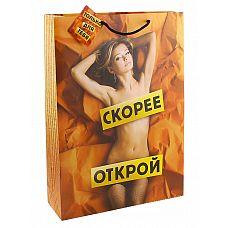 Большой подарочный пакет  Скорее открой   Ламинированные бумажные пакеты   лидеры по популярности среди подарочной упаковки.