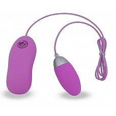 Фиолетовое виброяйцо на пульте управления   Виброяйцо, выполненное из силикона, 7 режимов вибрации.