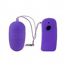 Фиолетовое виброяйцо с дистанционным управлением   Фиолетовое виброяйцо с дистанционным управлением. 10 функций вибрации.