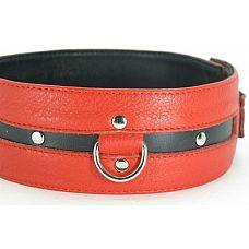 Черно-красный кожаный ошейник увеличенного размера  Черно-красный кожаный ошейник увеличенного размера.
