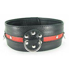 Черно-красный кожаный ошейник увеличенного размера с кольцом  Черно-красный кожаный ошейник увеличенного размера с кольцом.