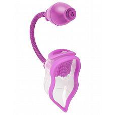 Помпа для клитора Perfect Touch Vibrating Pump  Мощная женская вакуумная помпа для вагинального и клиторального пампинга с вибрацией подарит вам незабываемые ощущения! С каждым сжатием насоса она  стимулирует половые губы и влагалище всё больше и больше, повышая приток крови для умопомрачительного удовольствия и ярких оргазмов!  Клиторальный стимулятор в виде щеточки можно использовать с вибропулей, так и без неё.