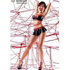 Комплект c юбкой Mai с веревками для связывания (Shibari), S  В комплект входит:   бюстгальтер юбка трусики 2 веревки для связывания (8м)   Mai интригует и завораживает.