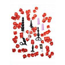 Набор анальных игрушек для новичков Anal Starter Kit   Набор анальных игрушек позволит даже новичкам открыть для себя удовольствие от анального секса.