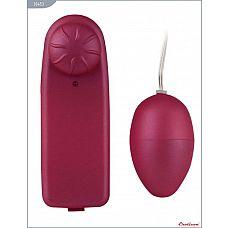 Розовое виброяйцо «Ночная Фея» с проводным пультом  Компактный мини-вибратор, созданный для придания особого удовольствия вашим любовным играм.