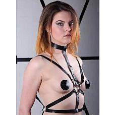 Чёрная портупея с ошейником  Секс в стиле БДСМ   это, прежде всего, общение с чётко распределёнными ролями, в котором важна каждая деталь, создающая особое настроение и атмосферу.