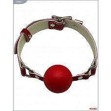 Красный пластиковый кляп с фиксацией кожаными ремешками  Классический кляп-шар на кожаных ремешках   высококачественное изделие с современной фурнитурой, аккуратными креплениями и отличной контрастной белой строчкой.