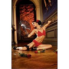 Spanish Комплект белья OS (42-46), красный  Покажите себя дикой и игривой — необычное сочетание огненно-красного основного материала и красных рюшей создает идеальные условия для этого.