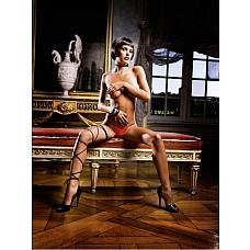 Mafia Трусики женские L, красный  Мини-бикини классического покроя, отделанные особо тонким кружевом, которое привносит особенную элегантность и делает мини-бикини подходящими как для повседневной носки, так и для романтических моментов.