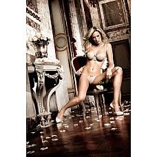 Dolce Vita Комплект бикини светло-серый с косточками и бантиком ML  Кульминационным моментом светло-серого комплекта бикини - его  строгий, романтичный дизайн .
