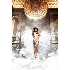Back in Heaven Монокини белый из тюлевой ткани в точечку  Ангельский Monokini укутает Вас своей нежно-белой  прозрачной тюлевой тканью с игривыми маленькими точечками.