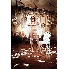 Back in Heaven G-Стринги розовые кружевные; ML  Нежные, розовые G-стринги из тонкого кружева с соблазнительным орнаментом, которые украшают тело - это небесный комплимент Вашей женственности.
