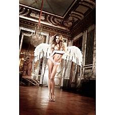 Back in Heaven G-Стринги светло-розовые кружевные; ML  G-Стринги светло-розовые из тонкого кружева с соблазнительным орнаментом, которые украшают тело - это нежный комплимент Вашей женственности.