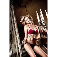 Have Fun Princess Бюстгальтер красно-бордовый с мягкими чашечками, косточками и съемными бретельками  С благородством и разнообразием предстает этот красно-бордовый бюстгальтер,  раскрывающий Вашу страсть. Отличный раскрой мягких чашечек идеально подчеркивает глубокое декольте а их бесшовная форма позволяет оставаться невидимой под одеждой. Косточки превосходно поддерживают Вашу грудь, а съемные бретельки  придают комфортность. Размер: 32 А; цвет: Красно-бордовый