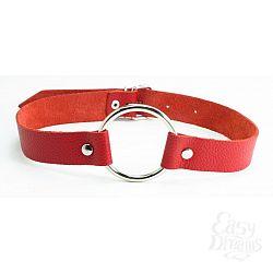 Красный кожаный кляп с кольцом