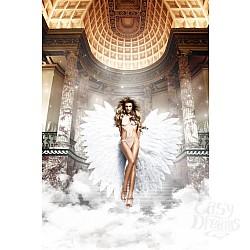 Baci Lingerie Black Label Back in Heaven Монокини белый из тюлевой ткани в точечку