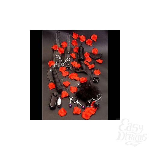 Фотография 1:  Элегантный набор чёрных вибраторов AMAZING PLEASURE