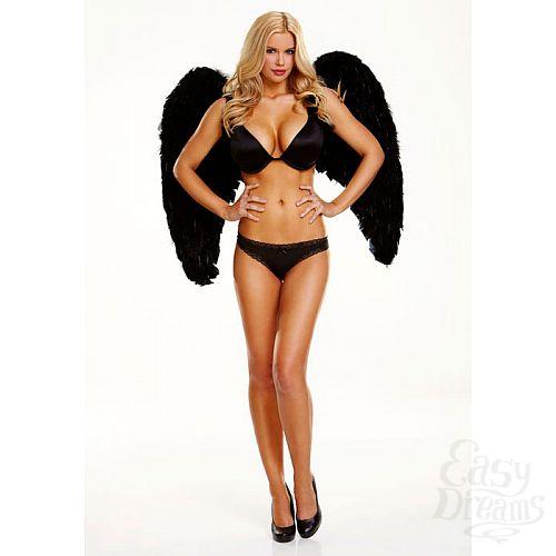 Фотография 1:  Большие крылья из натуральных перьев DARK DELIGHT