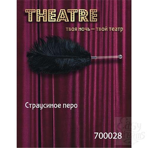 Фотография 1:  Чёрное страусовое пёрышко