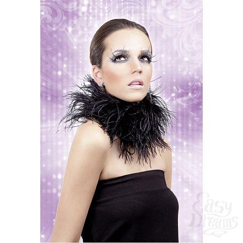 Фотография 2  Черные ресницы-перья