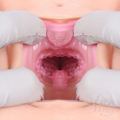 Фотография 7  Мастурбатор VICTORIA с вагиной и анусом без вибрации