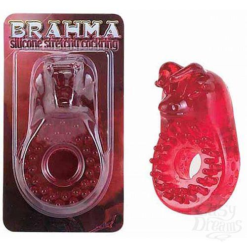 Фотография 1:  Кольцо эрекционное *BRAHMA*