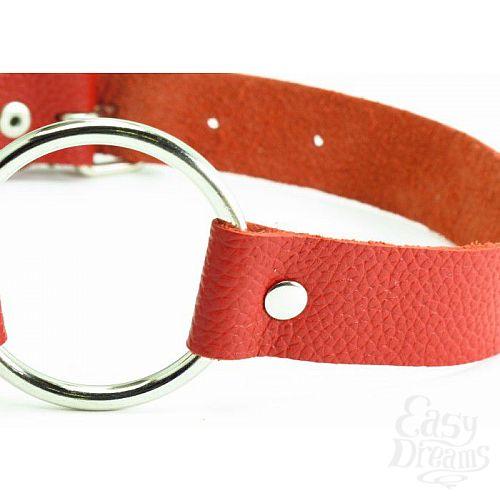 Фотография 2  Красный кожаный кляп с кольцом