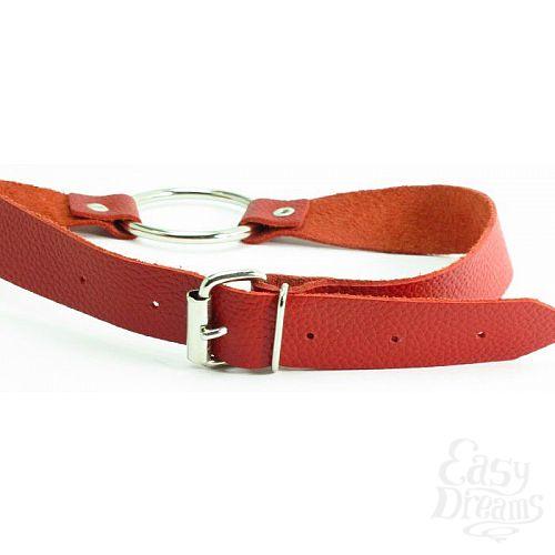 Фотография 3  Красный кожаный кляп с кольцом