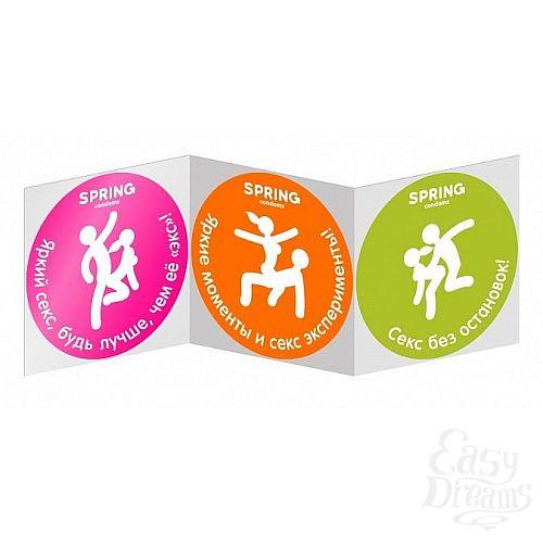 Фотография 2  Классические презервативы SPRING CLASSIC - 100 шт.