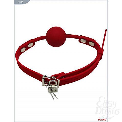 Фотография 3  Красный силиконовый кляп с фиксацией