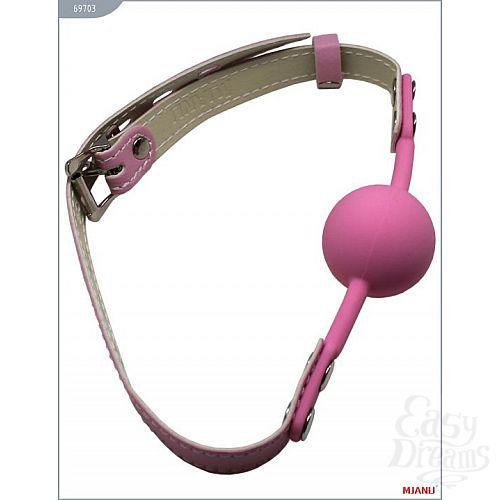 Фотография 1:  Розовый силиконовый кляп с фиксацией розовыми кожаными ремешками