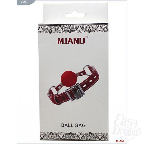 Фотография 5  Красный пластиковый кляп с фиксацией кожаными ремешками