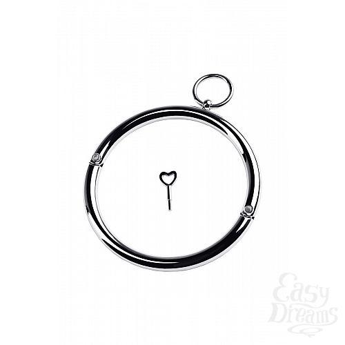 Фотография 3  Металлический ошейник с кольцом и ключиком