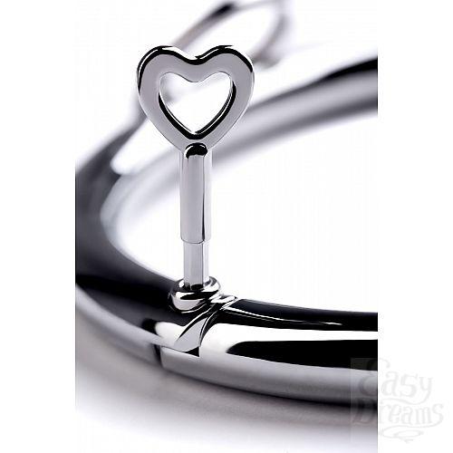 Фотография 7  Металлический ошейник с кольцом и ключиком