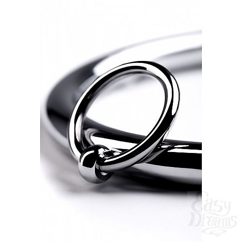 Фотография 8  Металлический ошейник с кольцом и ключиком