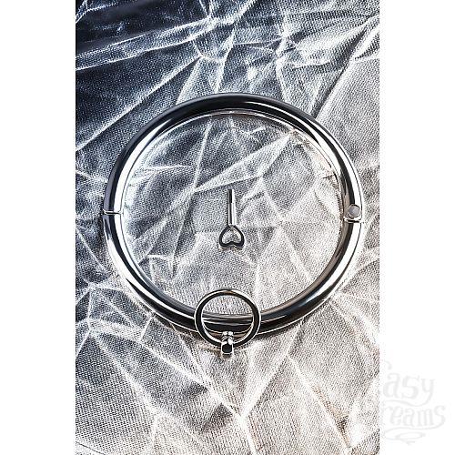 Фотография 9  Металлический ошейник с кольцом и ключиком