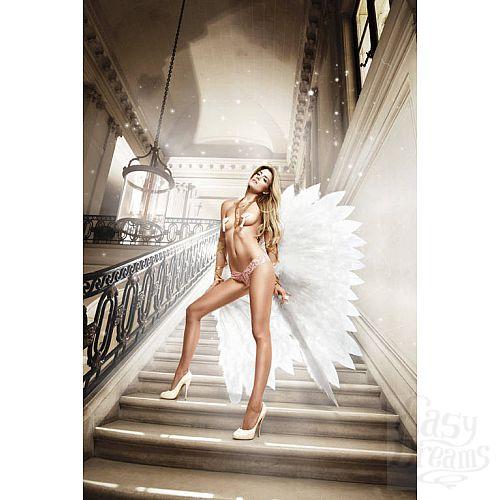 Фотография 1: Baci Lingerie Black Label Back in Heaven G-Стринги светло-розовые кружевные ; ML