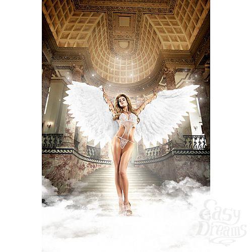 Фотография 1: Baci Lingerie Black Label Back in Heaven Монокини белый из тюлевой ткани в точечку с кружевными аппликациями