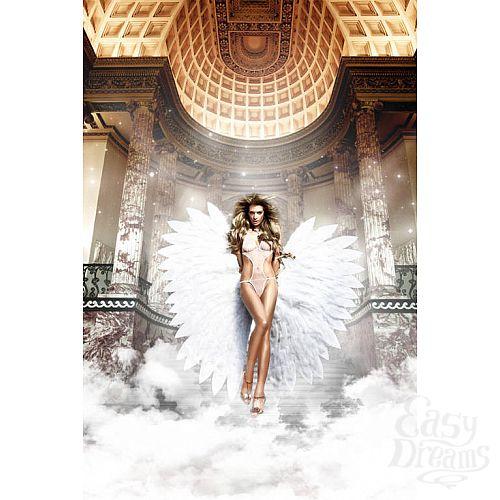 Фотография 1: Baci Lingerie Black Label Back in Heaven Монокини белый из тюлевой ткани в точечку